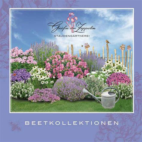 pflanzplan staudenbeet mit gräsern staudenbeet mit pflanzplan gr 228 fin zeppelin