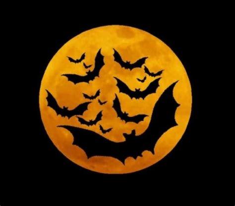 imagenes de halloween vector halloween is just around the corner gear up with student