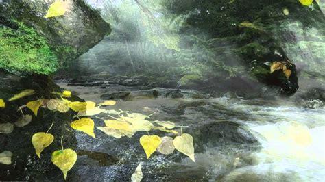 imagenes relajantes sin musica paisajes de r 237 os con m 250 sica relajante de fondo vol1 youtube