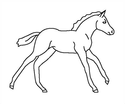 coloring pages of baby horses 12 horse coloring pages jpg download