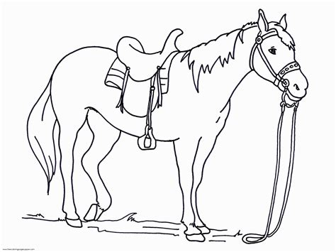 big coloring pages of horses free coloring pages for horses coloring home