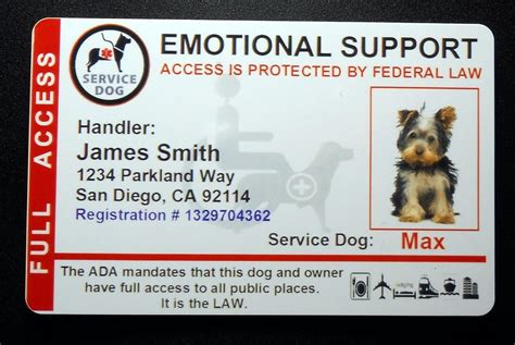 printable service dog id cards holographic emotional support animal id card service dog