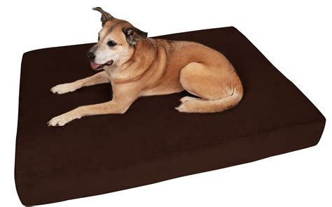 large dog bed top 6 best orthopedic dog bed reviews for 2017