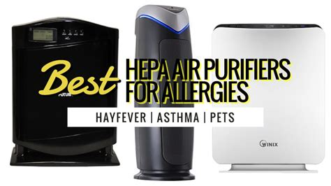 best hepa air purifiers for allergies uk review guide 2018 updated