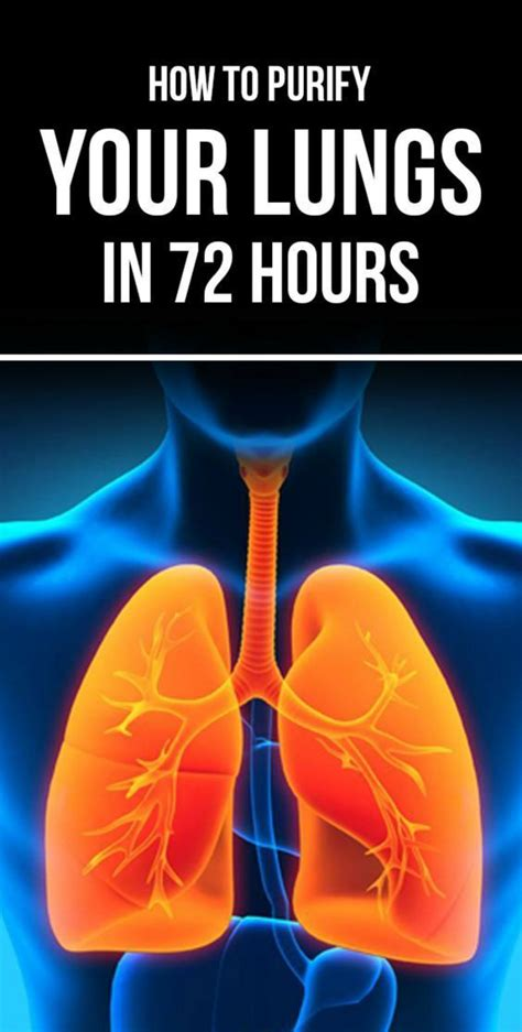 How To Detox Your Lungs After Quitting by 1064 Best Me Quit Images On Quit