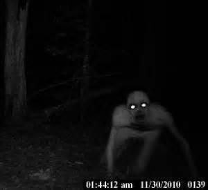 Home Decor Baton Rouge trailcam captures mysterious demonic creature