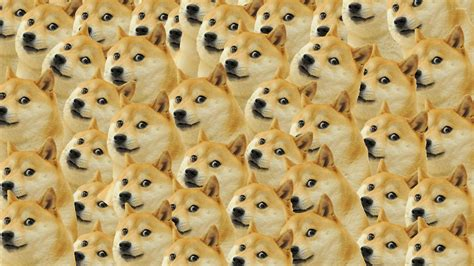 Doge Meme Wallpaper - doge pattern wallpaper meme wallpapers 27481