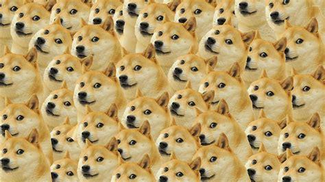 doge pattern wallpaper meme wallpapers 27481