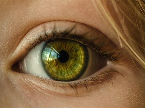 imagenes de ojos zarcos descubren un nuevo movimiento del ojo humano