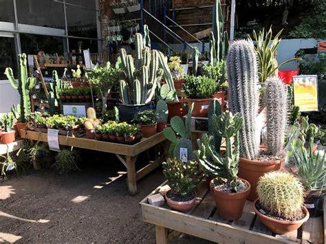 garden centres  plant shops  london  lush