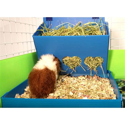 Guinea Pig Feeders hearty acres ranch guinea pig hay feeders and litter trays and more