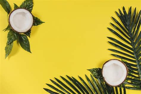 superficie amarilla  cocos  hojas de palma descargar