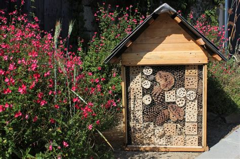 bug house plans insect houses plans house and home design