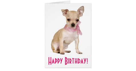 Puppy Birthday Cards Happy Birthday Chihuahua Puppy Dog Greeting Card Zazzle Com