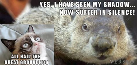 Groundhog Meme - groundhog day