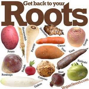 roots vegetables list vegan the daily meme archive