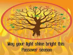 wishes for a special passover free happy passover ecards 123 greetings