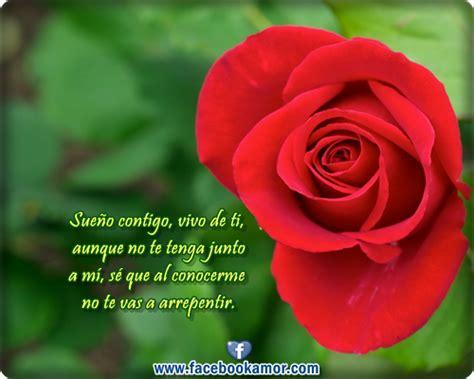 Bonitas De Rosas Rojas Con Frases De Amor Imagenes De Amor Facebook | imagenes bonitas de rosas rojas con frases de amor para