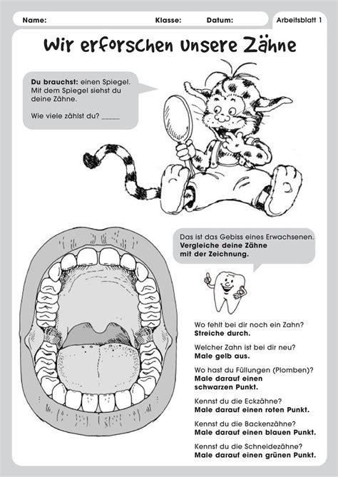 wann ist ein zahn tot wir erforschen unsere zahne pdf