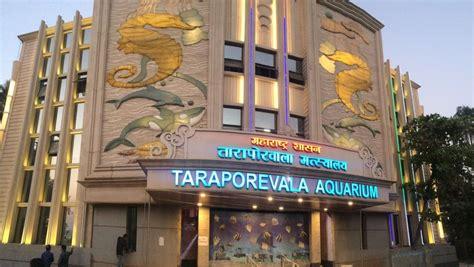 aquarium design mumbai taraporewala aquarium wikipedia