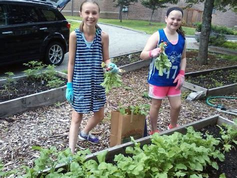 Bedford Food Pantry by School Garden Supplies Fresh Vegetables To The