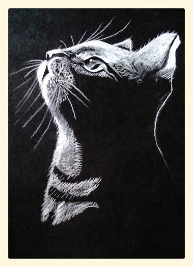 imagenes para dibujar en cartulina negra l 193 piz blanco alexdrawings