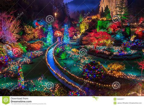 butchart gardens colorful christmas lights royalty free