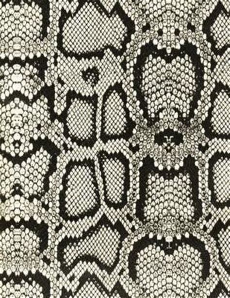 snake skin pattern black and white black and white faux snakeskin vinyl nice signs