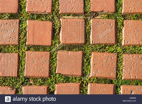 Garten Boden Steine by Grass Brick Path Texture Green Pavement Sidewalk