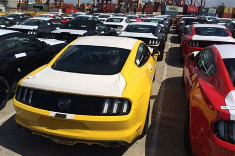 mustang club of australia australians are so hungry for right drive mustangs