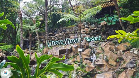 Wedding Di Green Forest Bandung by Tempat Wisata All In One Di Greenforest Resort Wedding