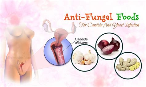 Detoxing Foods For Anti Fungal by 27 Research Based Anti Fungal Foods For Candida Yeast