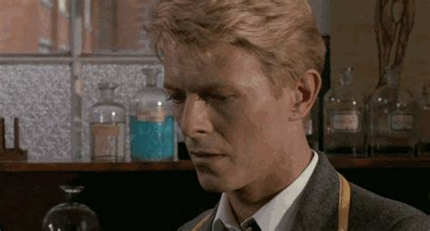david bowie jack celliers gif find share  giphy