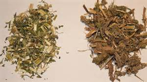 The importance of herb quality when treating disease dr