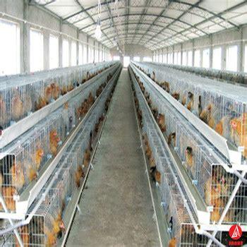 chicken farm house design cheap chicken laying cage layer egg chicken cage poultry farm house design buy