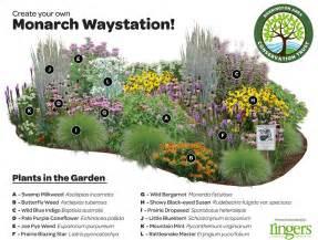 help save the monarchs ringers landscape services inc