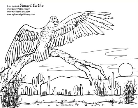 coloring pages of animals in their habitats fun coloring
