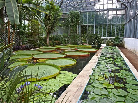 giardini di villa taranto i giardini di villa taranto serre aiuole floreali e gli