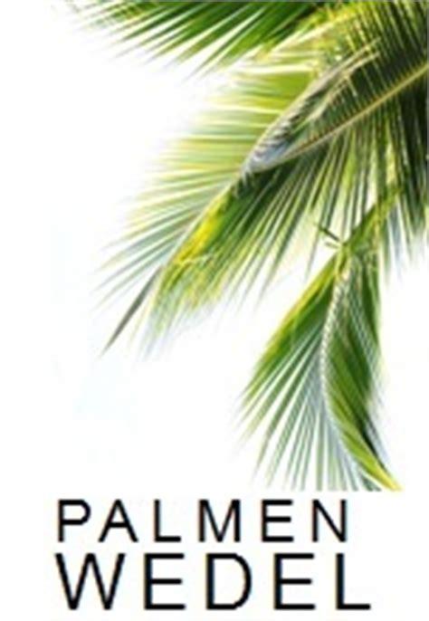 kunstpalme aussenbereich palmenprinz de kunstpalmen kunstpflanzen