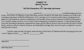 Limited Liability Company Agreement Template Limited Liability Company Operating Agreement Sample