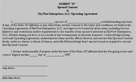 sle operating agreement llc florida