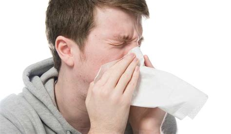 sneezing and runny nose home remedies for sneezing and runny nose wikihomenutrition
