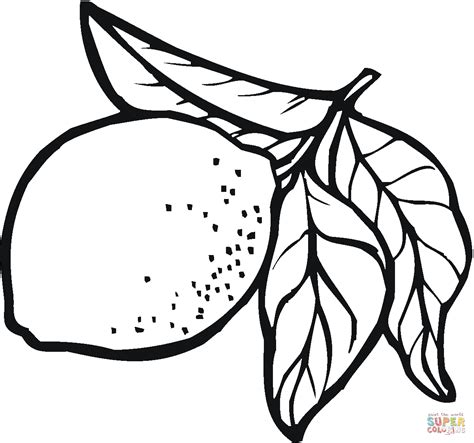 lemon 10 coloring page free printable coloring pages