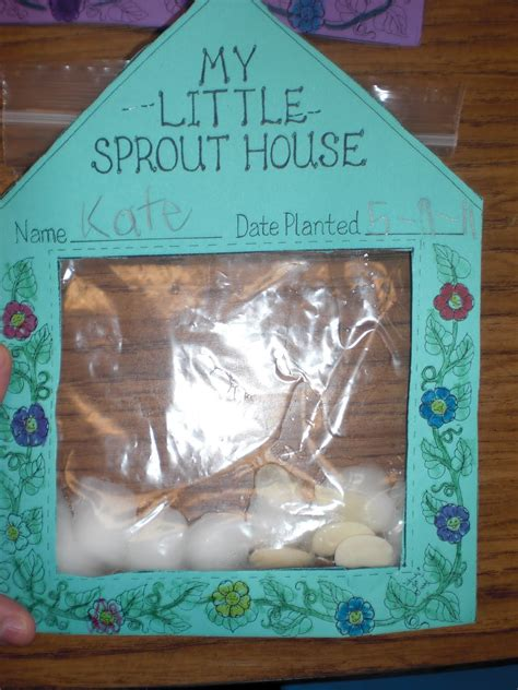 Sprout House by Patties Classroom Plants And Seeds And And The