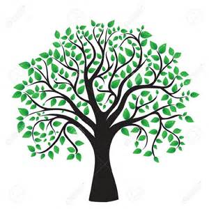 Tree Outline Green by Tree Clipart Transparent Background Clipartsgram