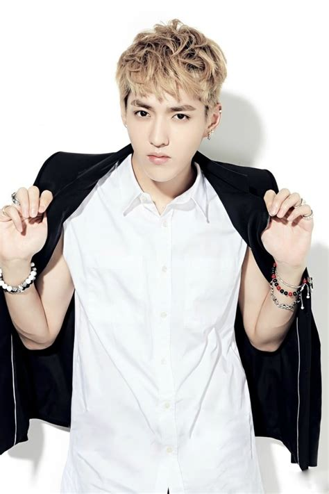 film exo kris exo s kris rumored to be cast in upcoming chinese film