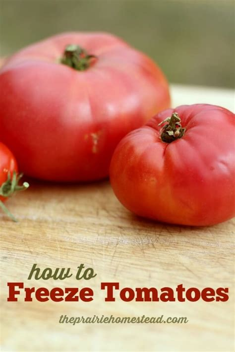 how to freeze tomatoes the prairie homestead