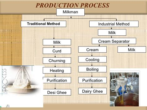 dairy farm business plan template sle business plan dairy processing plant automotive