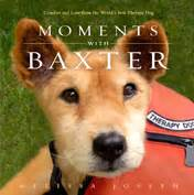 pawsitive pals books baxter the world s oldest working therapy comforted