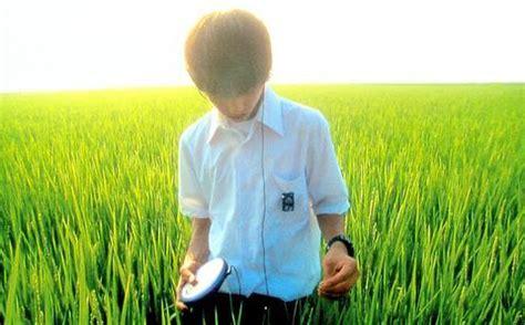roger eberts japanese film reviews filmjapan